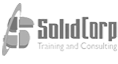 PT SolidCorporation - Consultant and training